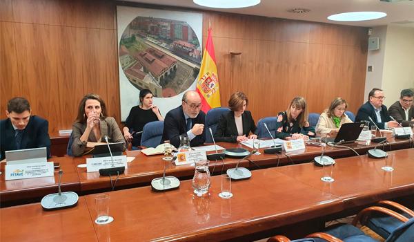Reunión extraordinaria del consejo ejecutivo de Conestur por el COVID-19