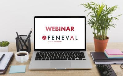 Webinar FENEVAL – ¿Cómo afectará el COVID-19 al Rent a Car?